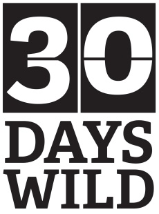 30dayswild_main2bblack