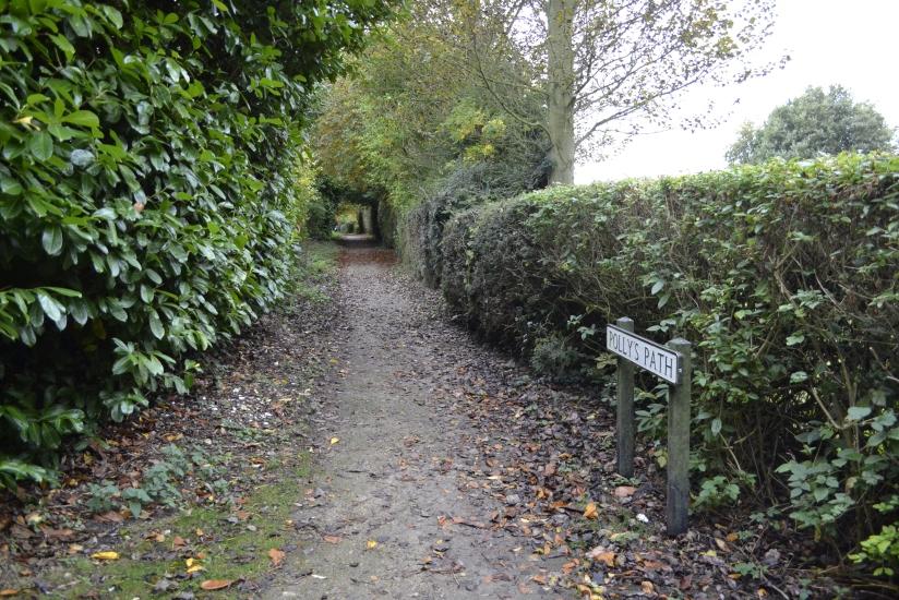 Polly's path