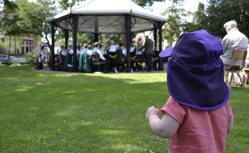 30 days of wild: Day 4 butterfly banquet, music in thegardens