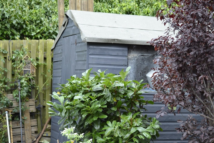 Frugal Friday-Not quite shed of the year