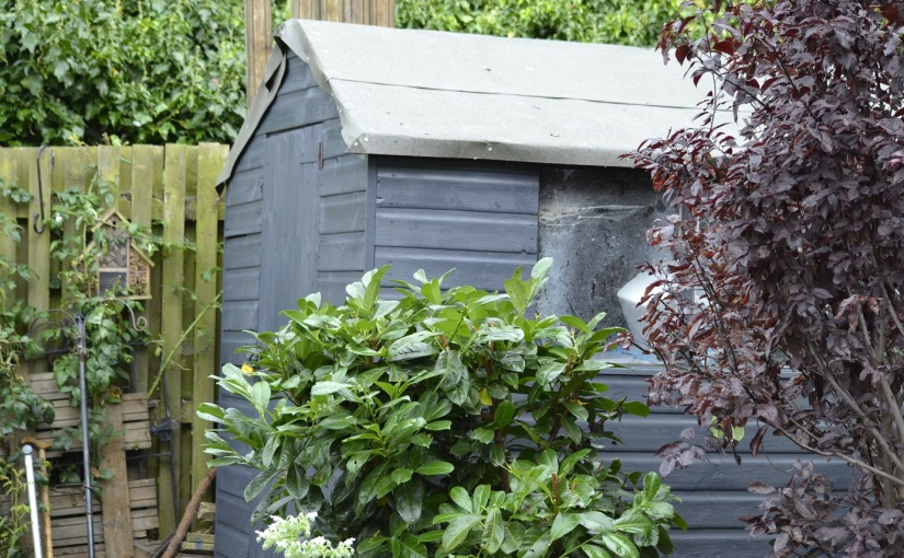 Frugal Friday-Not quite shed of theyear