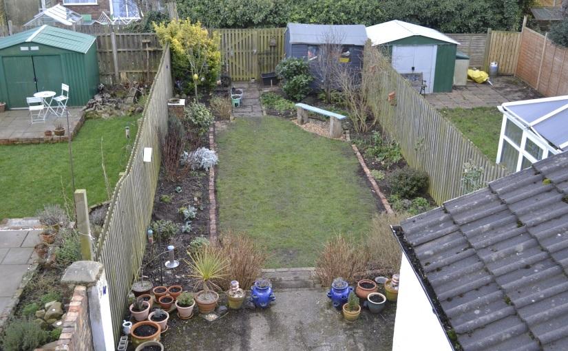 Garden update: February