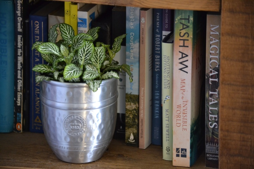 RHS Little book of happy house plants-Review