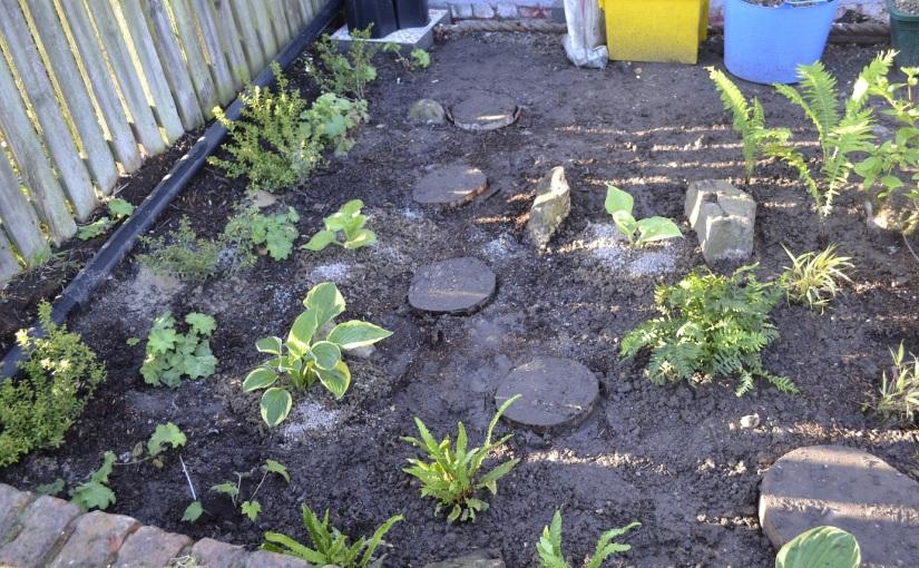 Front Garden update2