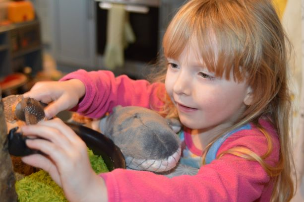 Half term adventure from home-The snail and the whale