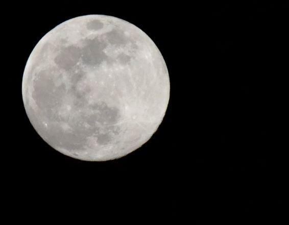 Nature schooling: Moon